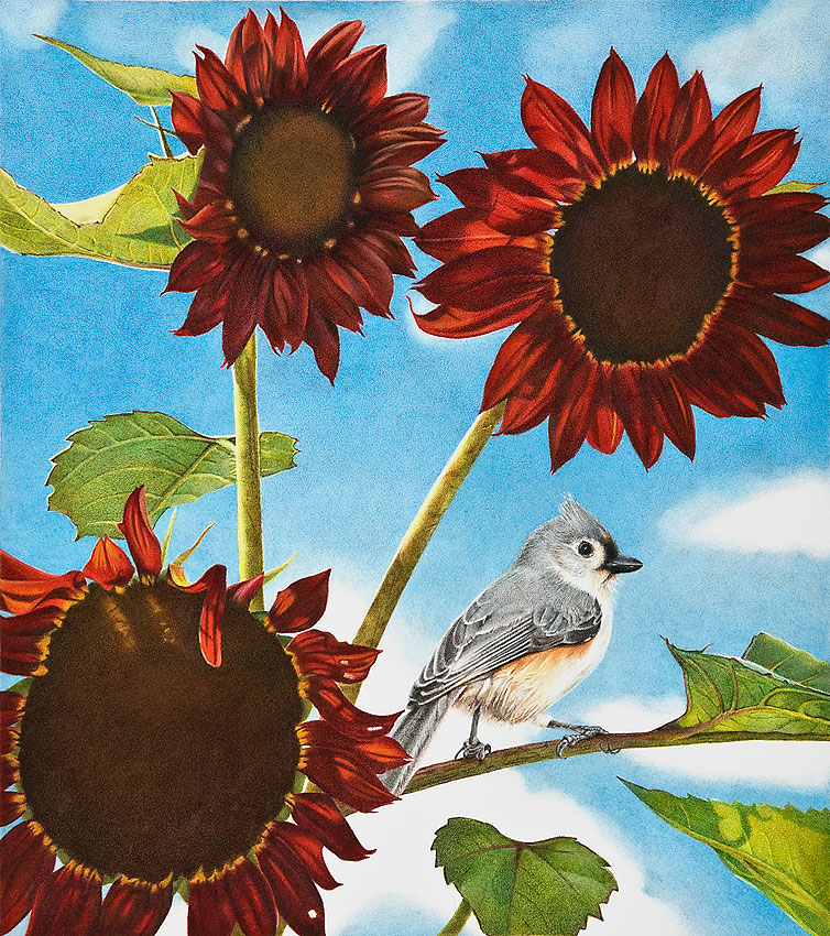 Image result for late summer birds